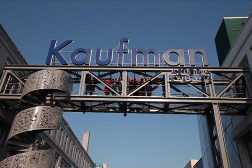 kaufman-art