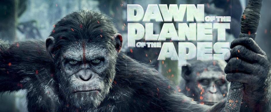 ape1.jpg